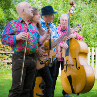 FiddleBop at the Nags Head Abingdon