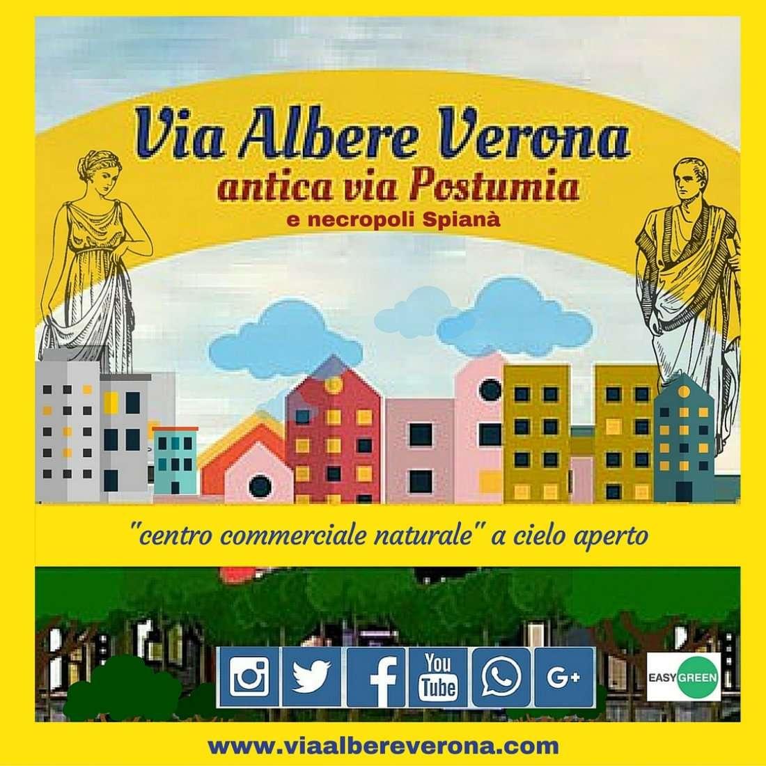 Scopri via Albere antica via Postumia alla 29a Sagra dello Stadio di Verona